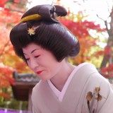 Momiji-Chakai Tea Ceremony