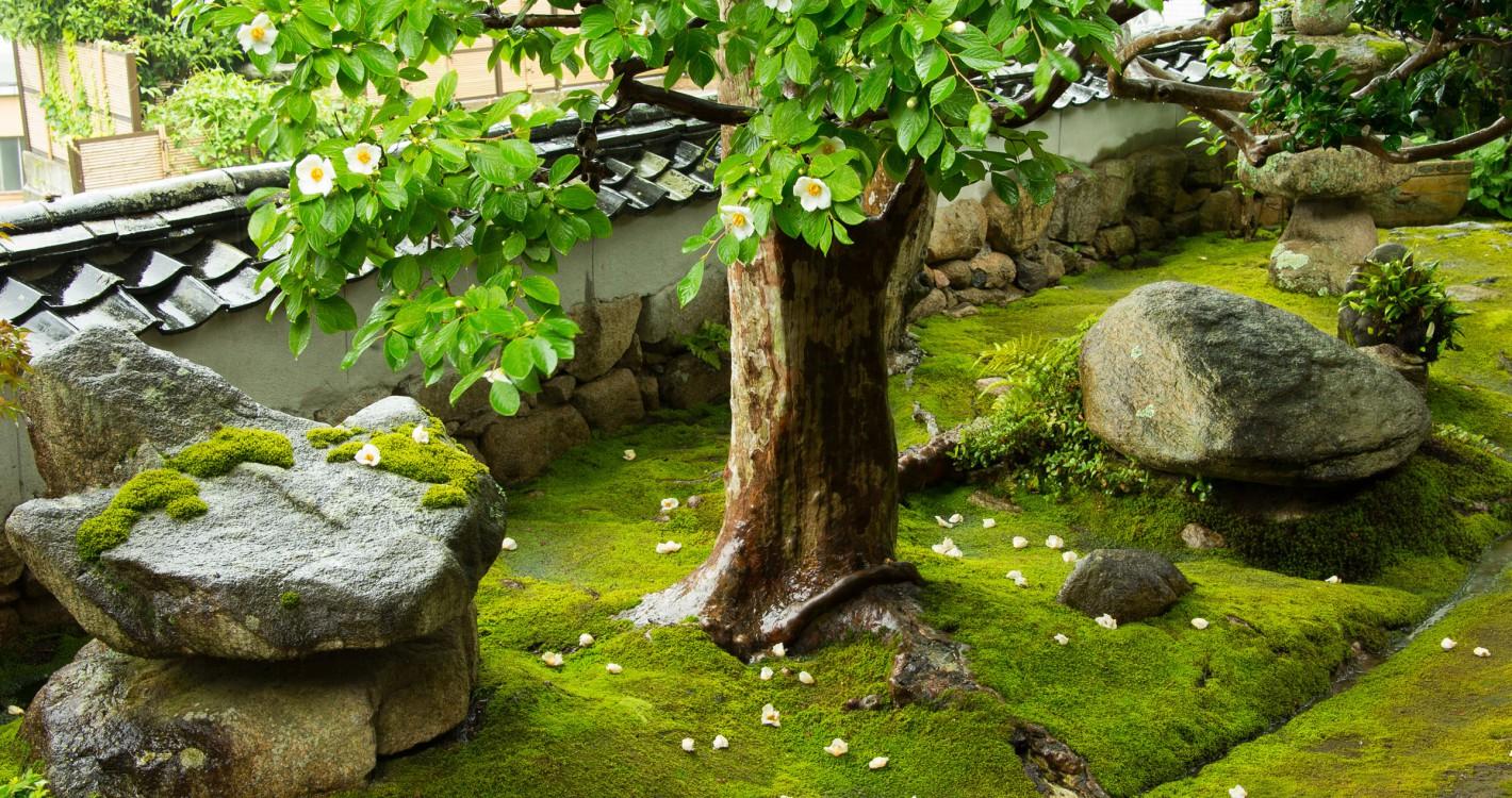 Visit Arima Onsen Kobe